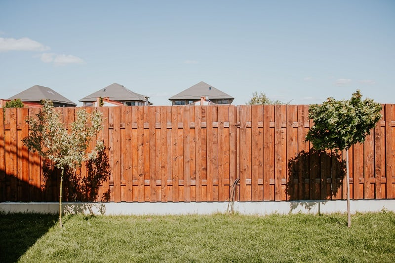 Best Pump Sprayer for Staining Fence